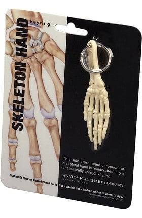 Anatomical Chart Company Hand Key Ring