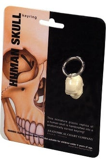 Anatomical Chart Company Skull Key Ring