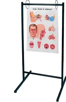Anatomical Chart Company Portable Chart Stand Anatomical Chart