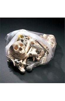 Anatomical Chart Company Large Bag of Bones
