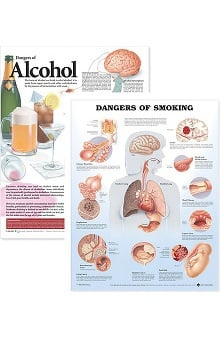 Anatomical Chart Company Healthy Lifestyle Dangers Of Alcohol, Dangers Of Smoking Set Of 2 Anatomical Charts