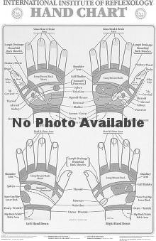 Anatomical Chart Company Hand Reflex Chart by The International Institute of Reflexology