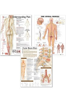 Anatomical Chart Company Neurology Three-Chart Set: The Spinal Nerves, Understanding Pain, and Understanding Low Back Pain