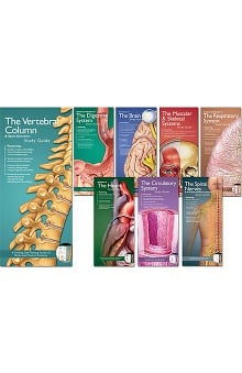 Anatomical Chart Company Illustrated Pocket Anatomy Study Guides (Set of 8)