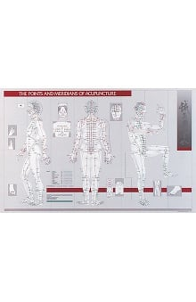 Anatomical Chart Company The Points and Meridians of Acupuncture Chart
