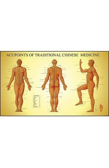 Anatomical Chart Company Acupoints of Traditional Chinese Medicine Chart