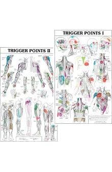 Anatomical Chart Company Trigger Points I & II Chart