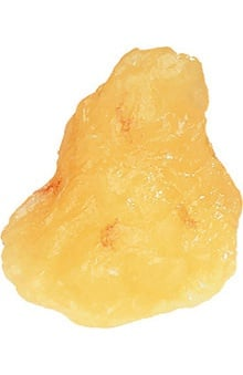 Anatomical Chart Company 1lb Fat Replica