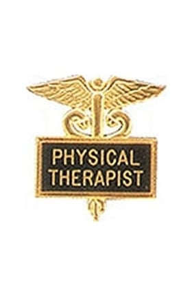 Arthur Farb Physical Therapist Gold Plated Inlaid Emblem Pin