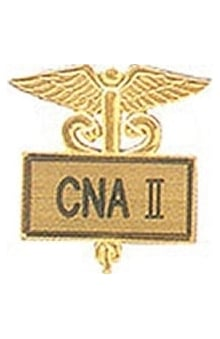 Arthur Farb CNA II Gold Plated Inlaid Emblem Pin