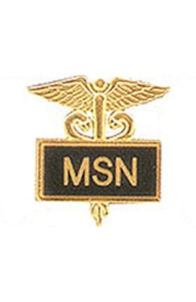 Arthur Farb MSN Gold Plated Inlaid Emblem Pin