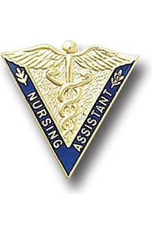 Gifts Accessories new: Nursing Assistant Pin