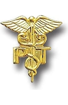 Arthur Farb Physical Therapist Pin