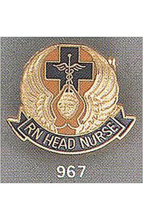 Arthur Farb RN Head Nurse Pin