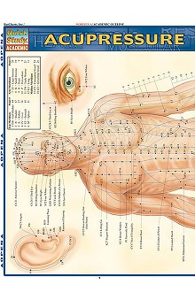 Bar Charts Acupressure Guide