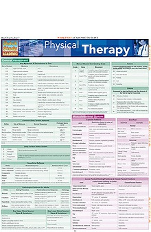 Bar Charts Physical Therapy Guide