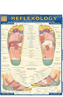 Bar Charts Reflexology Guide