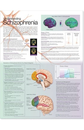 Anatomical Chart Company Schizophrenia Anatomical Chart