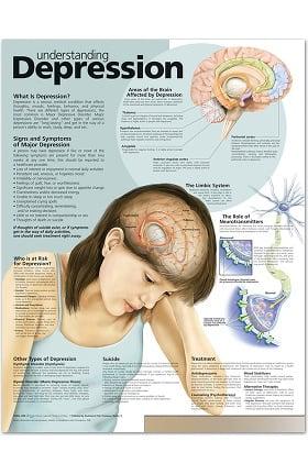 Anatomical Chart Company Depression Anatomical Chart