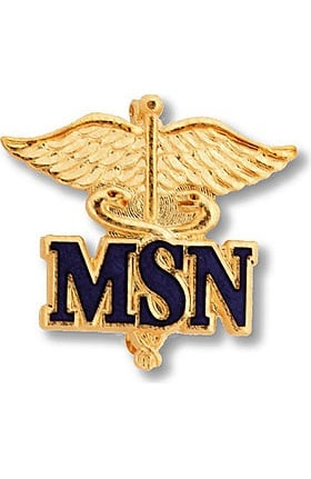 Prestige Medical Emblem Pin Master of Science in Nursing